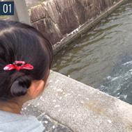 大阪出身の24歳です!!お客様の要望にお応えする事をいつも心がけています。夢を大きくする提案を目指して日々精進です。